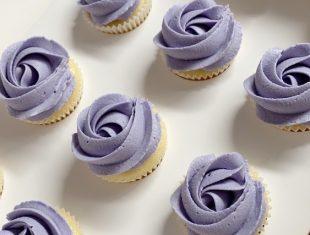 Rosette-Mini-Cupcakes